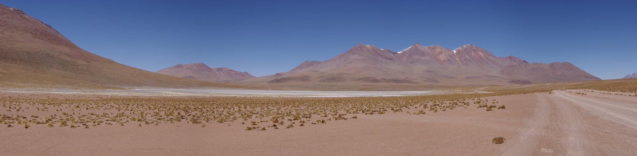 Dans le désert bolivien