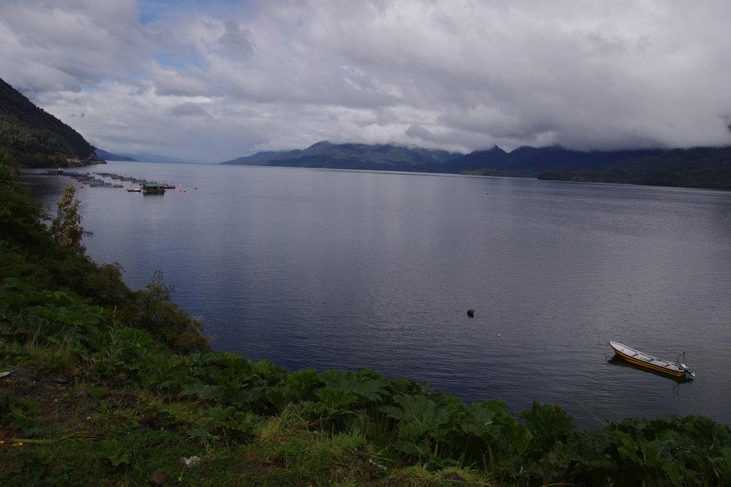 Vue sur le fjord