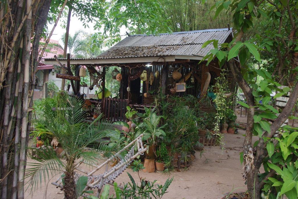 cabane en bambou