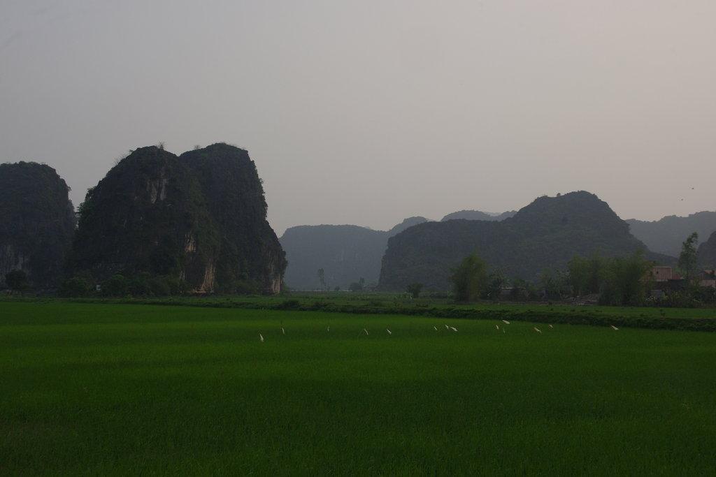 Paysages vietnamiens